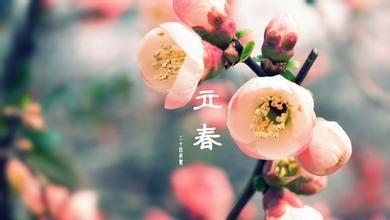 """立春含义  立春时值阳历2月上半月,农历常为一月上半月(逢闰月年则时令不确定)。天文学上把""""春分""""作为"""