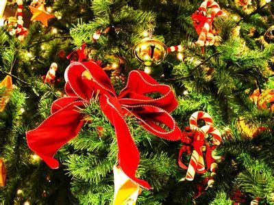 圣诞节的习俗