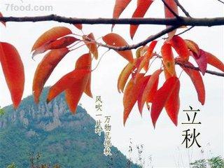 立秋,为二十四节气中第十三个节气,是秋天的第一个节气,在每年的8月7日、8日或9日,此时太阳黄经为13