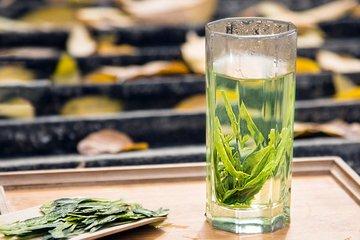 绿茶的冲泡图片
