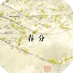 春分养生文化图片