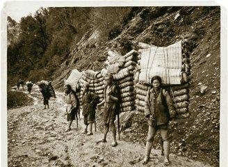 茶文化与茶叶贸易