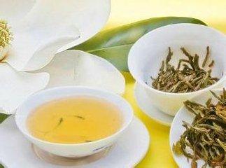 什么是蒲公英茶