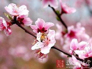 """从大量的史料中可以看出,原来立春之后这个节气的命名并不是""""惊蛰"""",而是""""启蛰""""。启蛰之后才是雨水"""