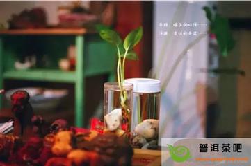 历代文人雅士除讲究好茶佳水精器外,还十分重视饮茶时的气氛环境。  清代著名书画家、诗人郑板桥,也