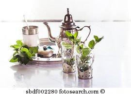薄荷茶的种类
