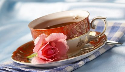 哺乳期能喝茶吗  所有母乳喂养的女性都知道她们应该尽量远离咖啡因,尼古丁,酒精和一些药物,但他们通常