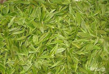 适量饮用绿茶对成年人大多安全。但患有胃病,缺铁症,对咖啡因耐受性低的人,孕妇或哺乳期妇女,贫血,
