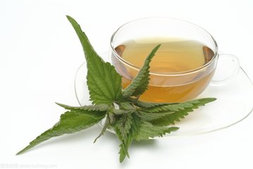 荨麻茶的功效图片