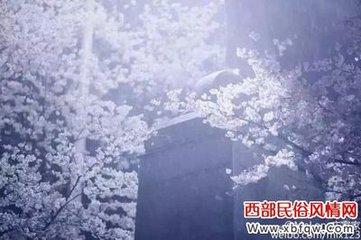 小雪的诗句:雪夜寒