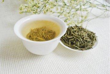 黄茶有哪些品种