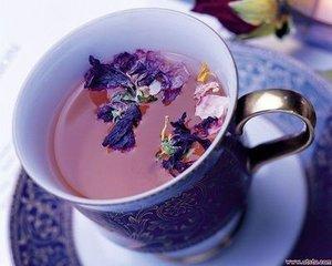 喝什么茶减肥