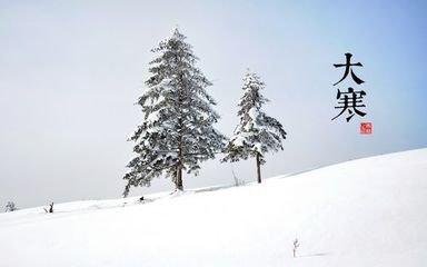 赞松柏  松柏天生独,青青贯四时。  心藏后凋节,岁有大寒知。  惨淡冰霜晚,轮囷涧壑姿。  或�