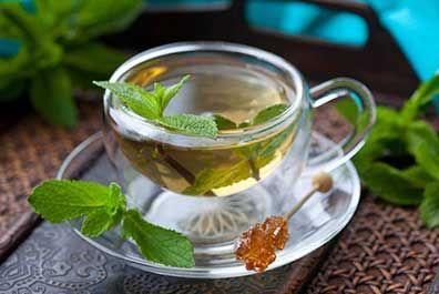 薄荷茶以唇形科植物薄荷或家薄荷的全草或叶为基原。每年小暑过后,气候日渐炎热,采摘芳香色绿之新鲜薄