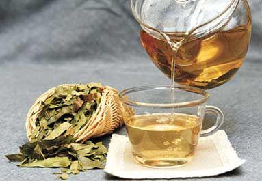柿子茶的功效与作用
