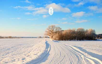 每年12月7日左右大雪。大雪节气,气温继续下降,降雪量比小雪节气加大,形成大雪,黄河流域地面开始积雪