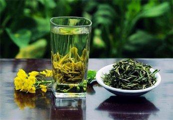 孕妇可以喝绿茶吗  没有官方建议说孕妇应该在怀孕期间停止喝绿茶。所以享用一两杯绿茶并没有什么坏处。