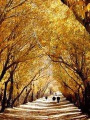 """春祭日,秋祭月  流传于民间的谚语""""春祭日,秋祭月"""",说的古代帝王礼制中的春秋二祭。祭月有节,也就是"""