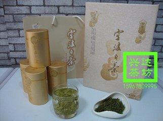 宁波白茶于2001年推出以来,基地规模得到迅速扩张,市场知名度急剧扬升,产业发展前景十分看好。  翻