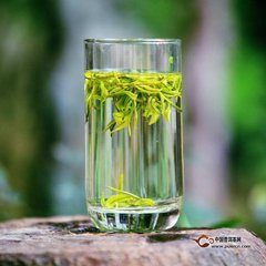 绿茶功效与作用