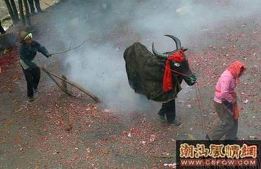立春节日文化的来源