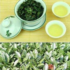 铁观音是一种半发酵茶,属于乌龙茶,介于绿茶和红茶之间。在西方,铁观音占茶叶消费总量的一小部分。铁