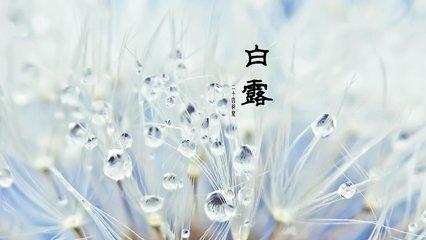 白露是哪一天  2018年的第15个节气是白露(拼音:Bai Lu),白露节气将于今年9月8日开始,并于9月23日结束
