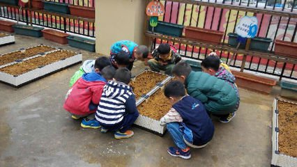 科迪策村与儿童节