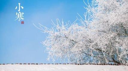 孤灯伴  冬宵寒且永,夜漏宫中发。  草白霭繁霜,木衰澄清月。  丽服映颓颜,朱灯照华发。  汉
