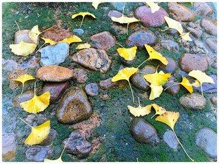 农历八月十五是一年秋季的正中,所以称之为中秋节。那一天云稀雾少,雨洗尘埃,秋高气爽,月光皎洁明亮