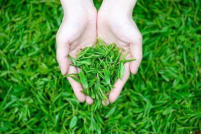 紫砂茶具始于宋代,盛于明清,流传至今