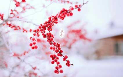 """""""立冬""""在每年公历的11月7日或8日,我国古时民间习惯以立冬为冬季的开始,《月令七十二候集解》说:"""""""