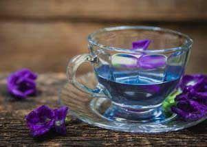 蝴蝶豌豆茶