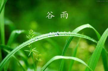 """百花之王牡丹,又叫做""""谷雨花""""。谷雨是她开花的日子。  冬日凋零的御花园,让喝醉了酒的武则天索然"""