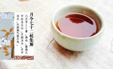 小暑茶语:教女学做荷花茶