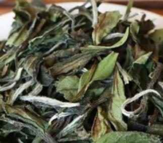 浅析白茶的功效及其作用!