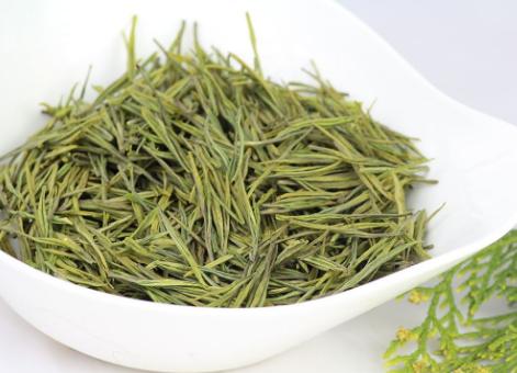 安吉白茶属于绿茶吗?