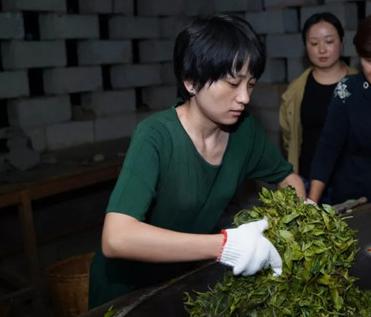 杀青是制茶技术的关键工序之一。青指鲜叶,杀青的含义是破坏鲜叶的组织。那么正确的杀青方式是什么样的