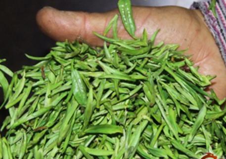 绿茶的制作工艺就不用说了,岩茶的制作工艺是典型的乌龙茶工艺。绿茶和岩茶的制作工艺的区别是:  绿
