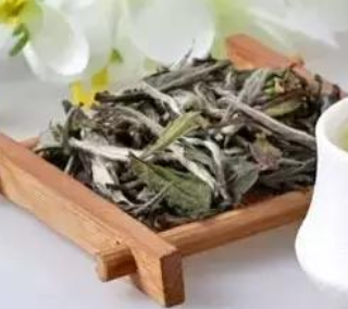 白茶,属微发酵茶,是中国茶农研制的传统式茗茶。中国六大茶类其一。指这种採摘后,没经茶叶杀青或�