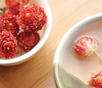 怎么泡红巧梅花茶?