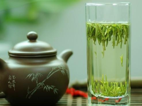 你买的绿茶为什么不好喝?因为你忽视了这些关键所在!