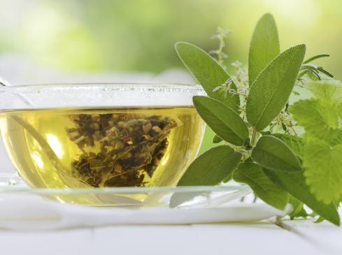 喝绿茶可有效改善记忆力!