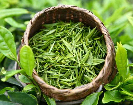 绿茶,美白养颜具有奇效!