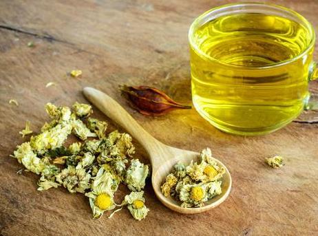 坚持适量饮用菊花茶,可起到防病保健的作用!