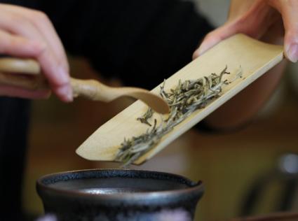 泡茶是很讲究的,很多人在日常饮茶时,常因错误的冲泡方法以至于茶汤的口感不是很好。为了助力各位茶友
