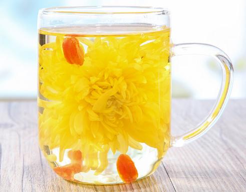 经期能不能喝菊花茶?