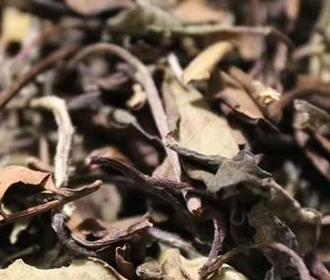 关于茶叶的储藏,请认准这几个诀窍!