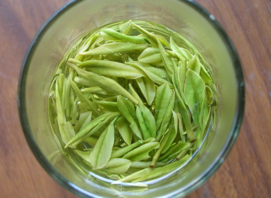 白茶有哪些特点?