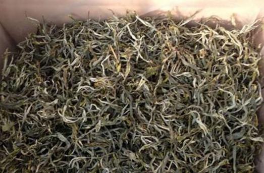 什么是无公害茶叶?